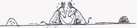 auch Esel werden klug